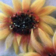 Oksana_Ball_Sunflowers_02